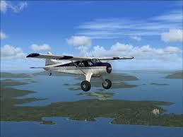 Bush Pilot Sendromu