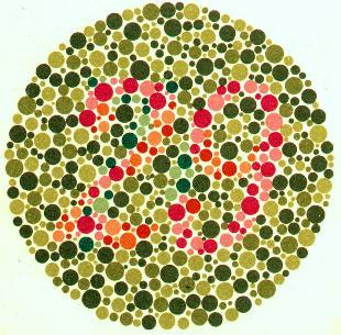 Renk Körlüğü ( Diskromatopsi ) 2 soru 2 cevap